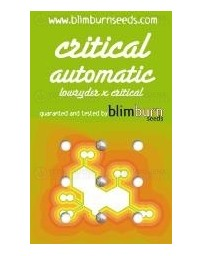 Critical Blim Burn autofloreciente