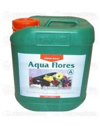 Aqua Flores A Canna