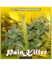 Pain Killer Dr. Underground