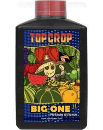 Big One Top Crop