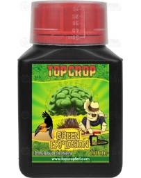 Green Explosion Top Crop