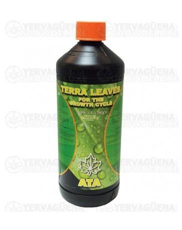 Terra Leaves Atami