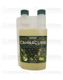 Cannacure Canna