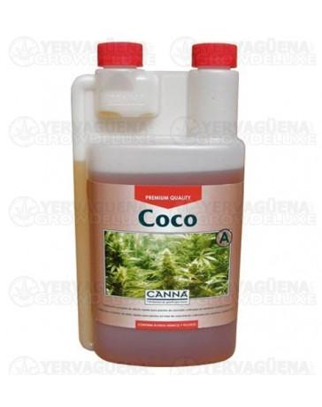 Coco A Canna