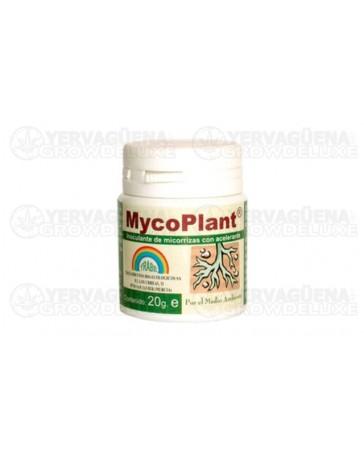 MycoPlant Micorrizas Trabe