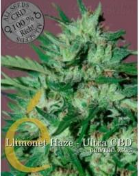 Llimonet Haze Ultra CBD Elite Seeds