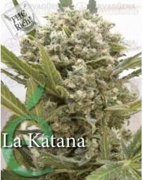 La katana Elite Seeds