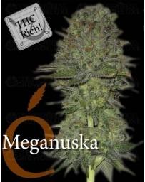 Meganuska Elite Seeds