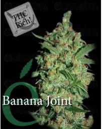 Banana Joint Elite Seeds