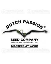 Coleccionista Mix 2 Dutch Passion
