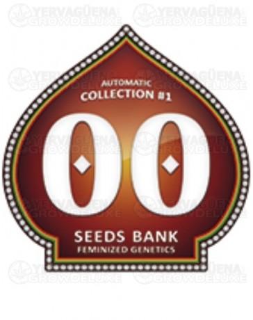 Automatic Collection #1 00 Seeds autofloreciente