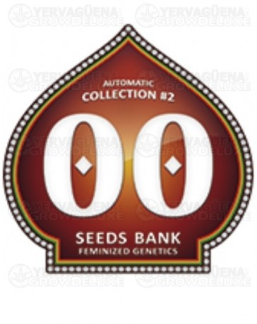 Automatic Collection #2 00 Seeds autofloreciente