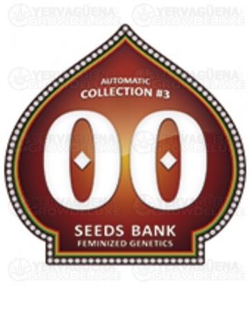 Automatic Collection #3 00 Seeds autofloreciente