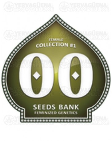 Female Collection #1 00 Seeds