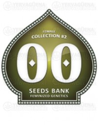 Female Collection #2 00 Seeds