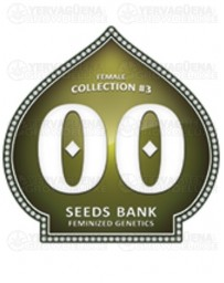 Female Collection #3 00 Seeds