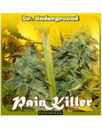 Pain Killer Dr. Underground Outlet