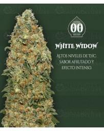 White Widow 00 Seeds