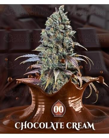 Chocolate Cream 00 Seeds