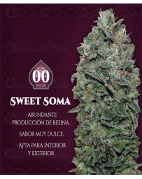 Sweet Soma 00 Seeds