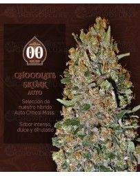 Chocolate Skunk Auto 00 Seeds Autofloreciente