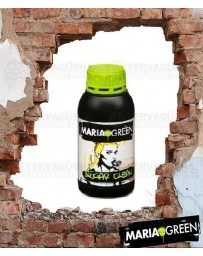 Sugar Clean Maria Green