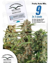Fruity Autoflower Mix Dutch Passion Autofloreciente
