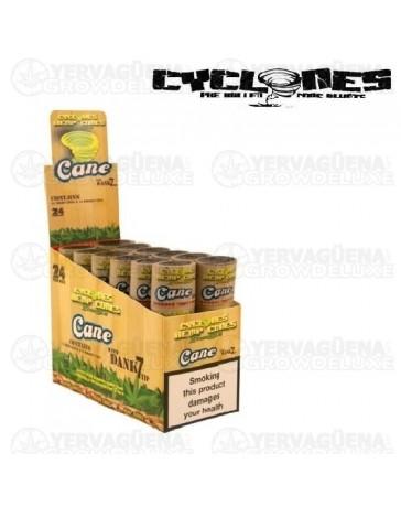 Cyclones Hemp Cones Sugar Cane