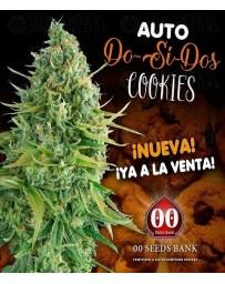 Auto Do-Si-Dos Cookies 00 Seeds Autofloreciente