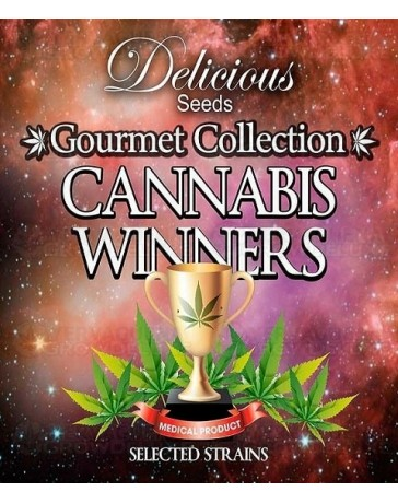 Gourmet Collection Cannabis Winners 1 Delicious Seeds