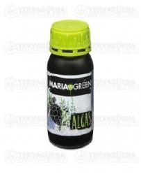 Algas Maria Green Outlet