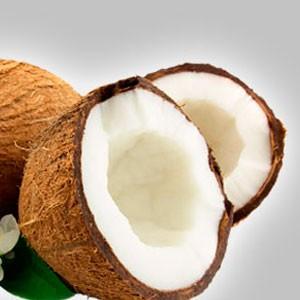 Cultivo en Coco