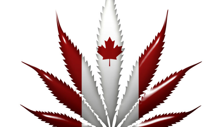 Canadá abre la puerta al cultivo de marihuana medicinal