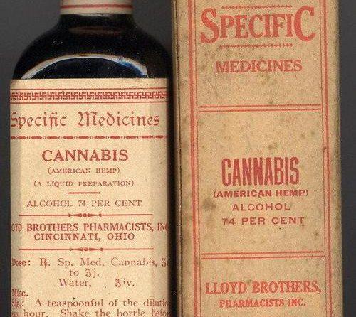 Uso terapéutico: cómo preparar tinturas y alcohol cannábico