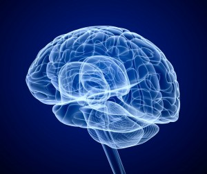 Cannabis frente al trauma cerebral
