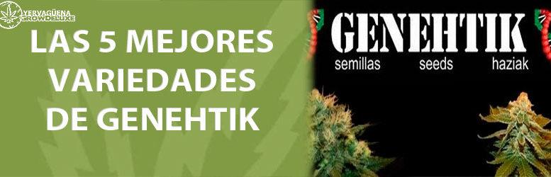 Las 5 mejores variedades de marihuana de Genehtik