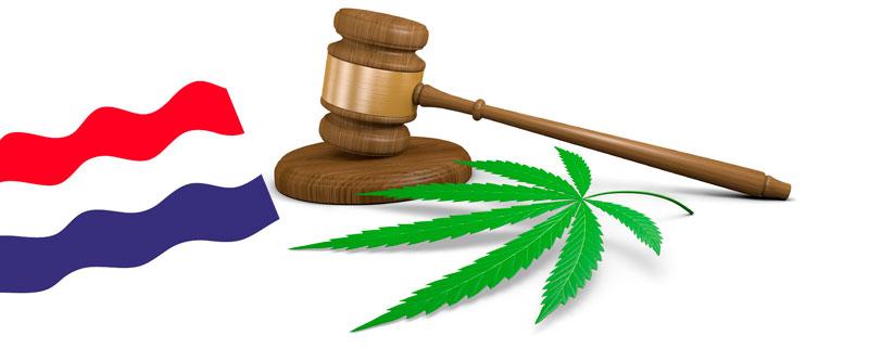 Ley marihuana de holanda