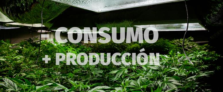 Reduce el consumo y aumenta la producción de tu cosecha