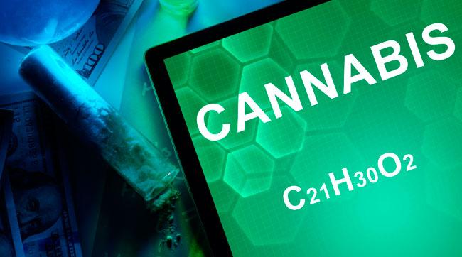 ¿Existen las sobredosis de marihuana?