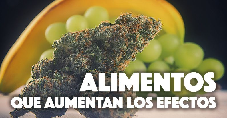 Alimentos que aumentan el efecto del cannabis