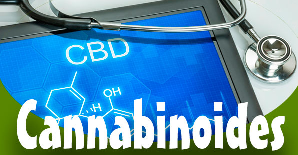 cannabinoides cancer