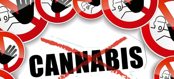 ilegal cannabis en españa