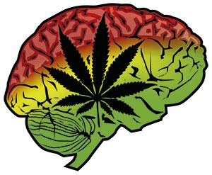 Cerebro con hoja de marihuana